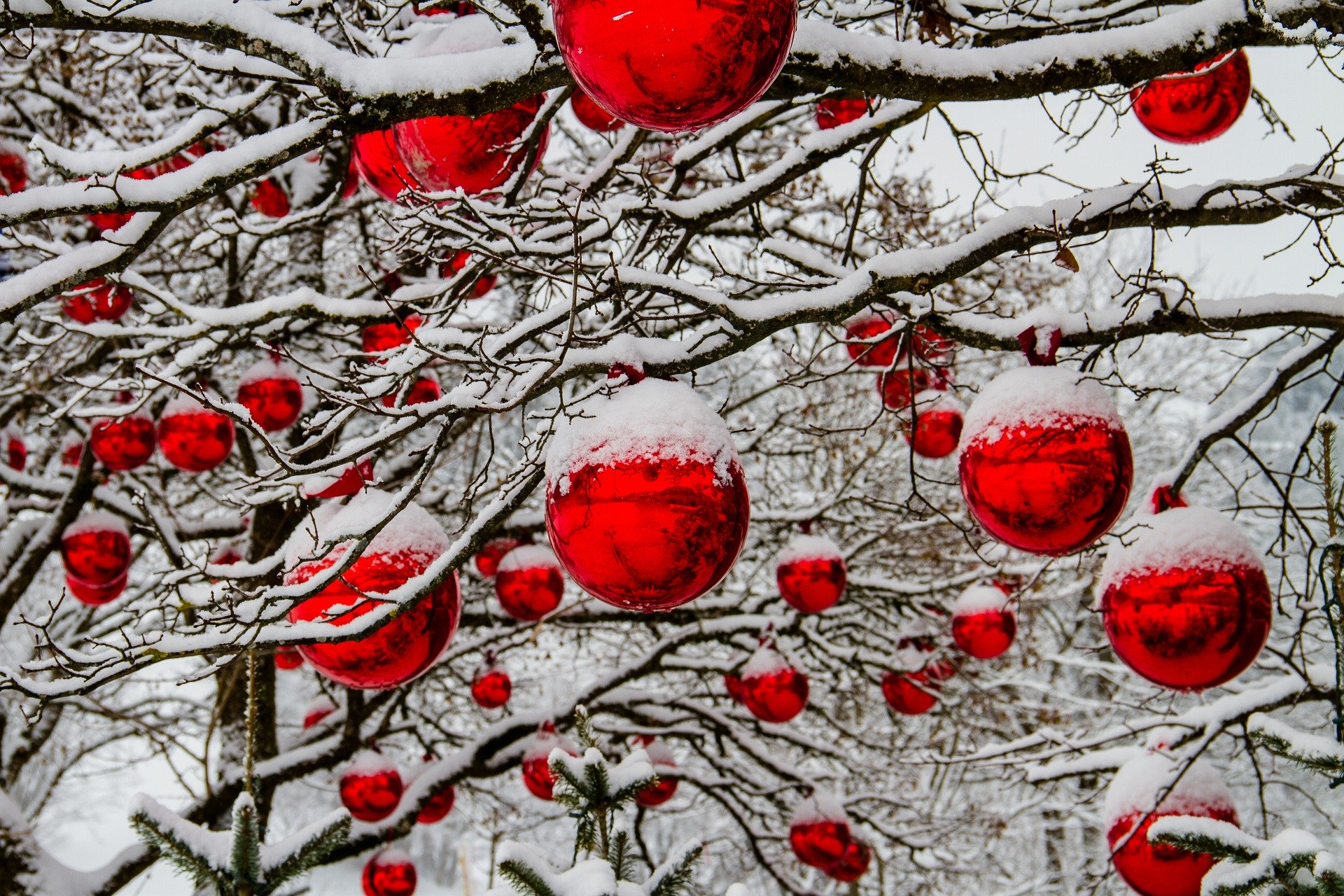 Christmas red ornaments. 5598375. via Pixabay. CC0 Creative Commons. christmas-3009720_1920